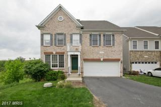 8 Catawba Manor Court, Clarksburg, MD 20871 (#MC9934866) :: Pearson Smith Realty