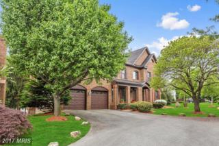 17834 Cricket Hill Drive, Germantown, MD 20874 (#MC9935455) :: Pearson Smith Realty