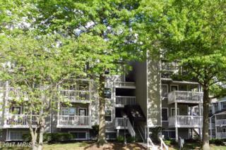 10817 Hampton Mill Terrace #130, Rockville, MD 20852 (#MC9936995) :: Pearson Smith Realty