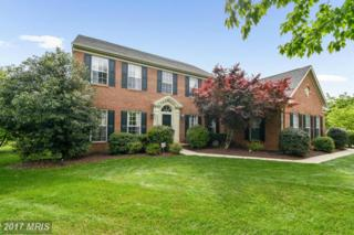 20320 Lubar Way, Brookeville, MD 20833 (#MC9939611) :: Pearson Smith Realty