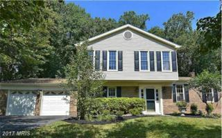 2306 Falling Creek Road, Silver Spring, MD 20904 (#MC9939834) :: Pearson Smith Realty