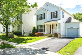 21232 Watercress Circle, Germantown, MD 20876 (#MC9941529) :: Pearson Smith Realty