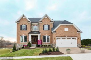 22809 Muscadine Drive, Clarksburg, MD 20871 (#MC9941840) :: Pearson Smith Realty