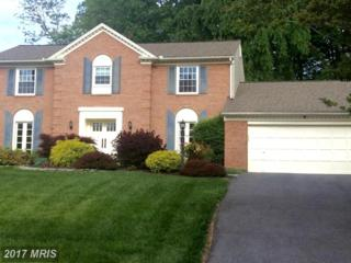 11610 Toulone Drive, Potomac, MD 20854 (#MC9943175) :: Pearson Smith Realty