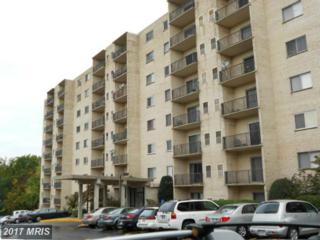 12001 Old Columbia Pike #203, Silver Spring, MD 20904 (#MC9943291) :: Pearson Smith Realty