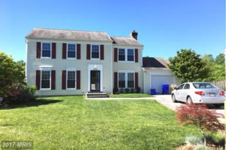 14204 Twig Road, Silver Spring, MD 20905 (#MC9946187) :: Pearson Smith Realty