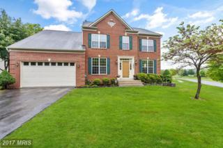 18901 Old Baltimore Road, Brookeville, MD 20833 (#MC9946574) :: Pearson Smith Realty
