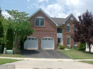 22006 Ivy Leaf Drive, Boyds, MD 20841 (#MC9948452) :: Pearson Smith Realty