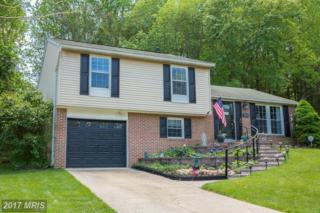 1119 Netherlands Court, Silver Spring, MD 20905 (#MC9948941) :: Pearson Smith Realty