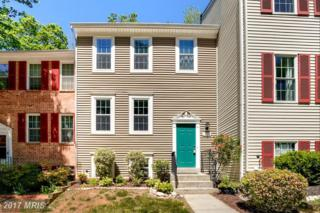 13009 Climbing Ivy Drive, Germantown, MD 20874 (#MC9949550) :: Pearson Smith Realty