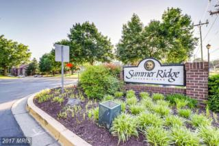 18411 Guildberry Drive #101, Gaithersburg, MD 20879 (#MC9950028) :: Pearson Smith Realty
