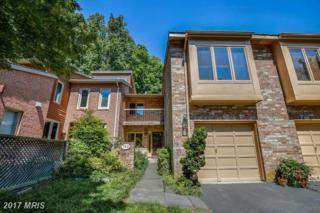 7821 Whiterim Terrace, Potomac, MD 20854 (#MC9950338) :: Pearson Smith Realty