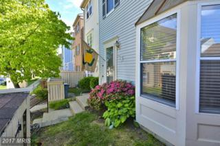 20162 Locustdale Drive #337, Germantown, MD 20876 (#MC9951842) :: Pearson Smith Realty