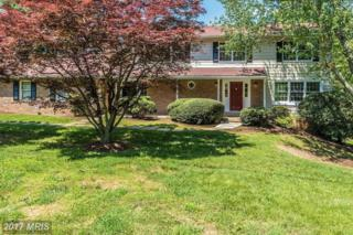 1626 Maydale Drive, Silver Spring, MD 20905 (#MC9952272) :: Pearson Smith Realty