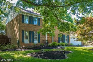 11205 Hawhill End, Potomac, MD 20854 (#MC9952813) :: Pearson Smith Realty