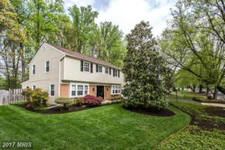 3212 Birchtree Lane, Silver Spring, MD 20906 (#MC9952818) :: Pearson Smith Realty