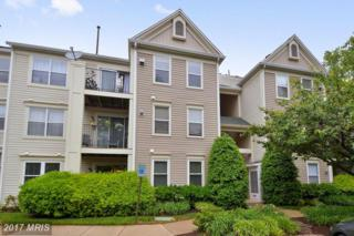 15313 Diamond Cove Terrace 9-8, Rockville, MD 20850 (#MC9956341) :: Pearson Smith Realty