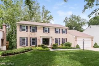 11412 Symphony Woods Lane, Silver Spring, MD 20901 (#MC9957106) :: Pearson Smith Realty
