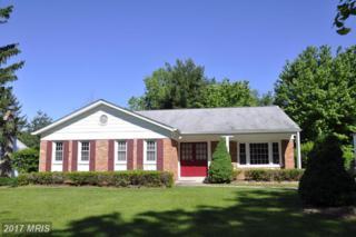5521 Marlin Street, Rockville, MD 20853 (#MC9958805) :: Pearson Smith Realty