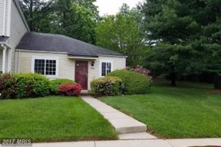 19942 Stoney Point Way, Germantown, MD 20876 (#MC9959066) :: Pearson Smith Realty