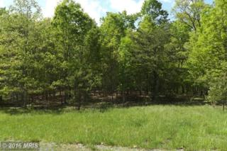 Old Oakview Drive, Fort Ashby, WV 26719 (#MI9505424) :: Pearson Smith Realty