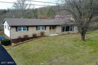 65 Marie Gardens Drive, Fort Ashby, WV 26719 (#MI9844690) :: Pearson Smith Realty