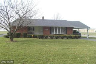 783 Harley Staggers Drive Drive, Keyser, WV 26726 (#MI9886997) :: Pearson Smith Realty