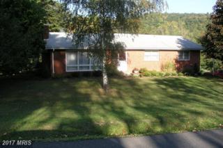 282 Mountain View Road, Keyser, WV 26726 (#MI9896746) :: Pearson Smith Realty