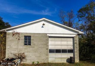 0 Route 1 Box 56 Route 28, Ridgeley, WV 26753 (#MI9959585) :: Arlington Realty, Inc.
