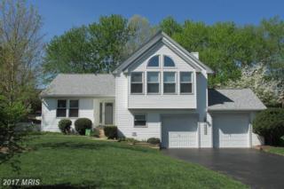 10292 S Grant Avenue, Manassas, VA 20110 (#MN9919812) :: Pearson Smith Realty