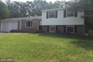 9242 Bayberry Avenue, Manassas, VA 20110 (#MN9951290) :: Pearson Smith Realty