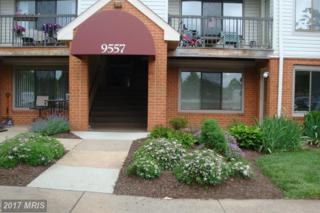 9557 Coggs Bill Drive #104, Manassas, VA 20110 (#MN9957101) :: Pearson Smith Realty