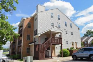 8805 Sugarwood Lane #28, Manassas, VA 20110 (#MN9959899) :: Arlington Realty, Inc.