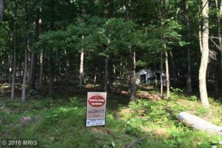 53 Senica Ridge Rd, Great Cacapon, WV 25422 (#MO9705157) :: Pearson Smith Realty
