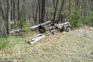Deer Run Wood, Berkeley Springs, WV 25411 (#MO9825695) :: Pearson Smith Realty
