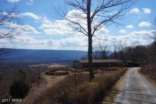 3907 Detour Road, Great Cacapon, WV 25422 (#MO9870096) :: Pearson Smith Realty