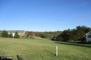 Dawson Farm Road, Berkeley Springs, WV 25411 (#MO9913962) :: Pearson Smith Realty