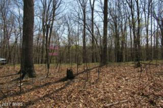 Dogwood Flats, Great Cacapon, WV 25422 (#MO9921997) :: Pearson Smith Realty