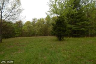 LOT 15 Schoolhouse Way, Hedgesville, WV 25427 (#MO9932879) :: Pearson Smith Realty