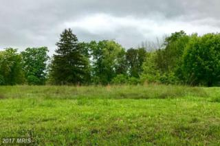 Fairview Drive, Berkeley Springs, WV 25411 (#MO9940254) :: Pearson Smith Realty
