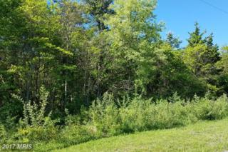 0 Fulton Road, Hedgesville, WV 25427 (#MO9940618) :: Pearson Smith Realty