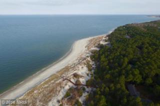 8 Lake Drive, Cape Charles, VA 23310 (#NH9721785) :: Pearson Smith Realty
