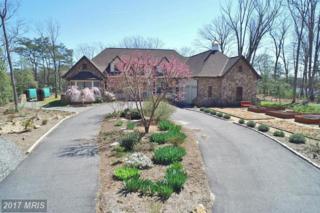 5 Eagles Nest Lane, Heathsville, VA 22473 (#NV9857974) :: LoCoMusings