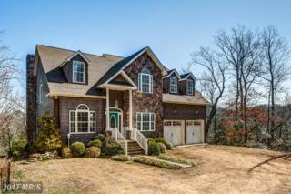 220 Ruddy Duck Lane, Heathsville, VA 22473 (#NV9884397) :: LoCoMusings