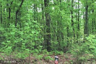 Locust Grove Drive, Locust Grove, VA 22508 (#OR9644033) :: Pearson Smith Realty