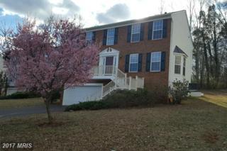 386 Harper Drive, Orange, VA 22960 (#OR9850189) :: Pearson Smith Realty