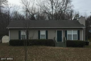 11245 Blue Ridge Court, Gordonsville, VA 22942 (#OR9853599) :: Pearson Smith Realty