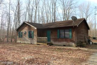 17410 Mountain Track Road, Orange, VA 22960 (#OR9866871) :: LoCoMusings