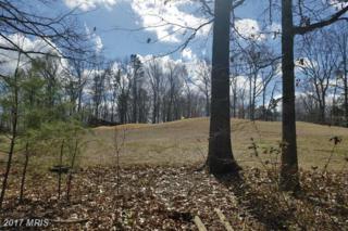 506 Mt Pleasant Drive, Locust Grove, VA 22508 (#OR9871648) :: Pearson Smith Realty
