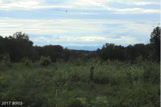 Pannell Lane, Culpeper, VA 22701 (#OR9876046) :: LoCoMusings